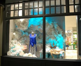 Anthro's Sea Inspired Windows